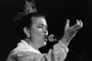 Juana Silva Esteban, Juana la del Revuelo. Bienal de Flamenco de Sevilla, 1996.  Foto: FJ Crespo