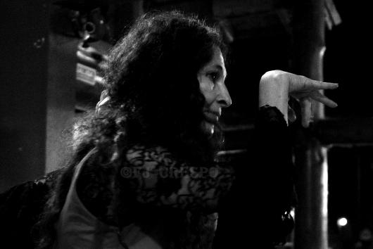 Myrna Fieg. Flamenco Patagónico. Lago Puelo (Chubut) Argentina, 2019. Foto: FJ Crespo