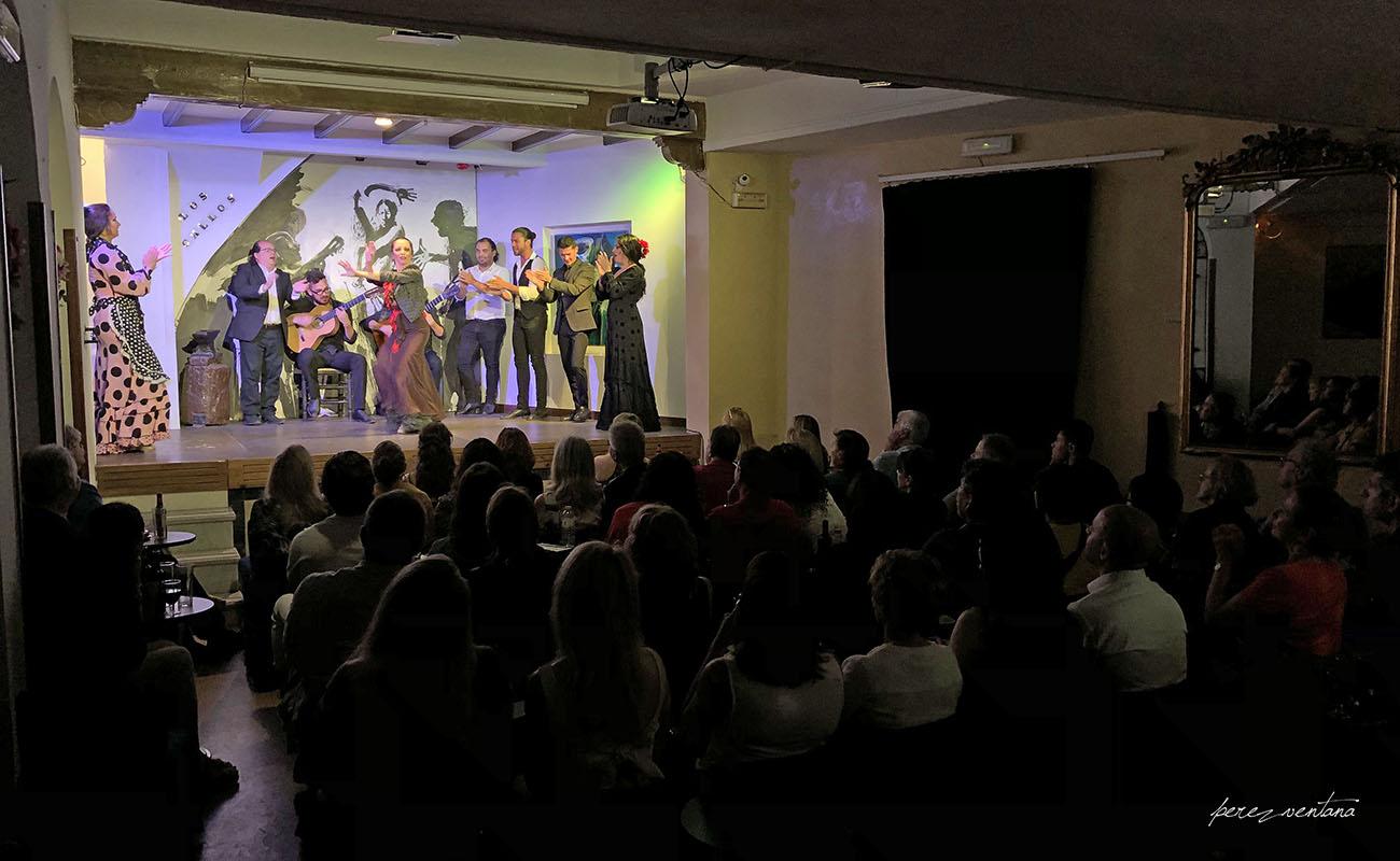 Espectáculo 'Guitarra, cante y baile flamencos' en el Tablao Los Gallos, Sevilla. Foto: Quico Pérez-Ventana
