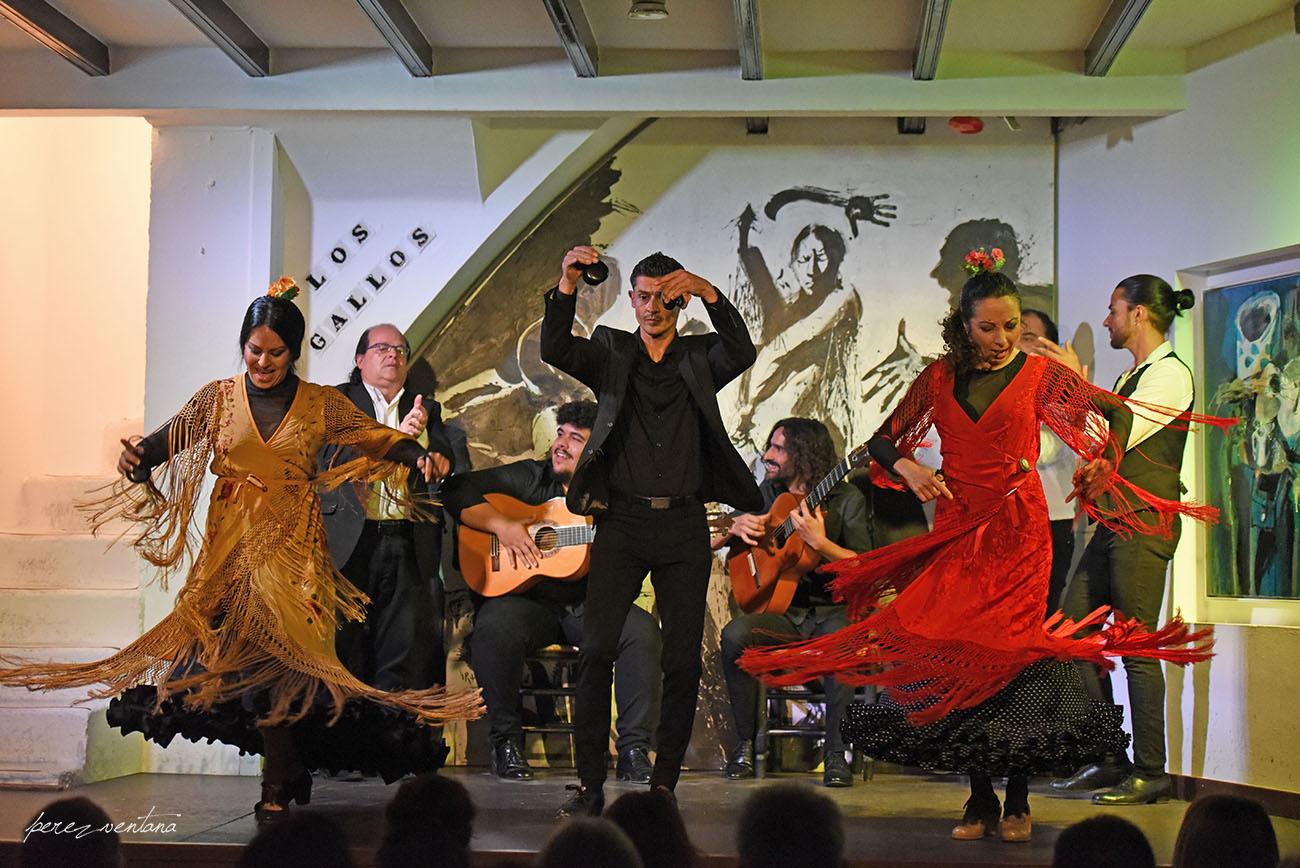 Al baile, Mercedes de Córdoba, Rafael Campallo y Rosario Toledo. Espectáculo 'Guitarra, cante y baile flamencos' en el Tablao Los Gallos, Sevilla. Foto: Quico Pérez-Ventana