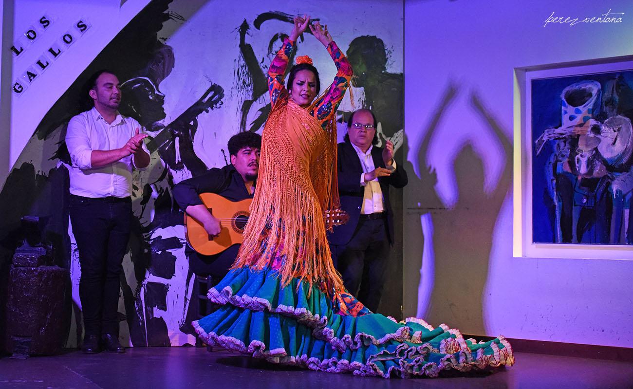 La bailaora Sandra Cisneros. Espectáculo 'Guitarra, cante y baile flamencos' en el Tablao Los Gallos, Sevilla. Foto: Quico Pérez-Ventana