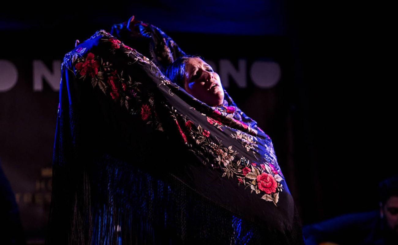 Paloma Fantova. Festival Flamenco On Fire, Pamplona. Foto: Javier Fergo