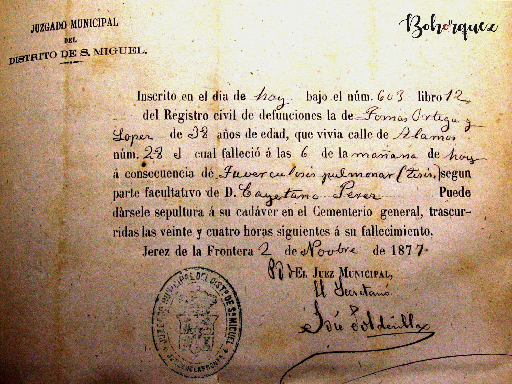Registro de la defunción de Tomás Ortega López El Nitri. Murió en la calle Álamos en 1877. Manuel Torres nacería en esa misma calle casi tres años después. Archivo Bohórquez.
