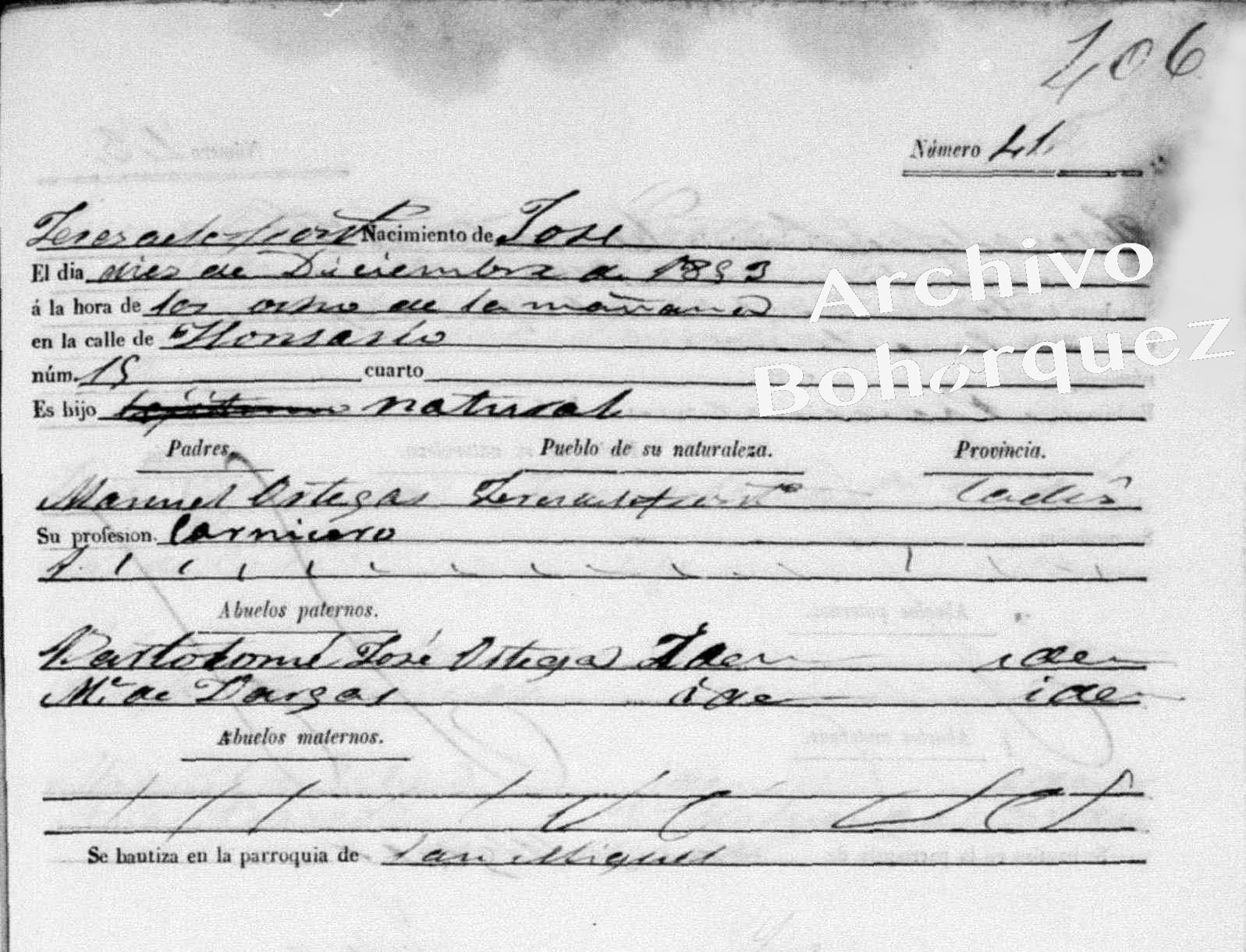 Nacimiento de José, 1853, hijo de Manuel Molina. Archivo Bohórquez.